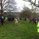 Devon Schools Cross Country